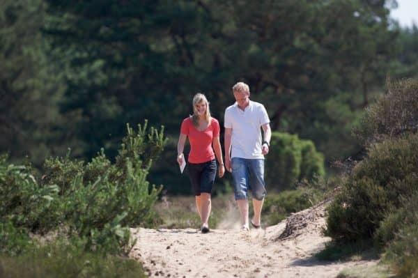 Wandelvakantie over de Geopark De Hondsrug Drenthe - Fietswandelvakantie.nl