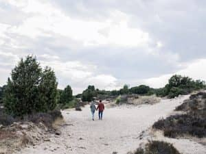 Wandelvakantie Nationaal Park Drents-Friese Wold
