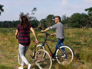 Lezersaanbieding Gazet - 4 daagse fietsvakantie 'Fietsen door de natuur en geschiedenis van Drenthe'